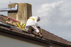 Pracovník DDD firmy prováví likvidaci vosího hnízda ve střeše.